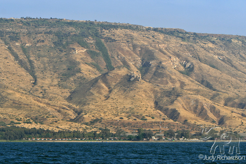 Golan Heights, Ein Gedi, & Sea of Galilee