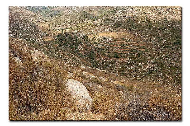 Jerusalem's mountains
