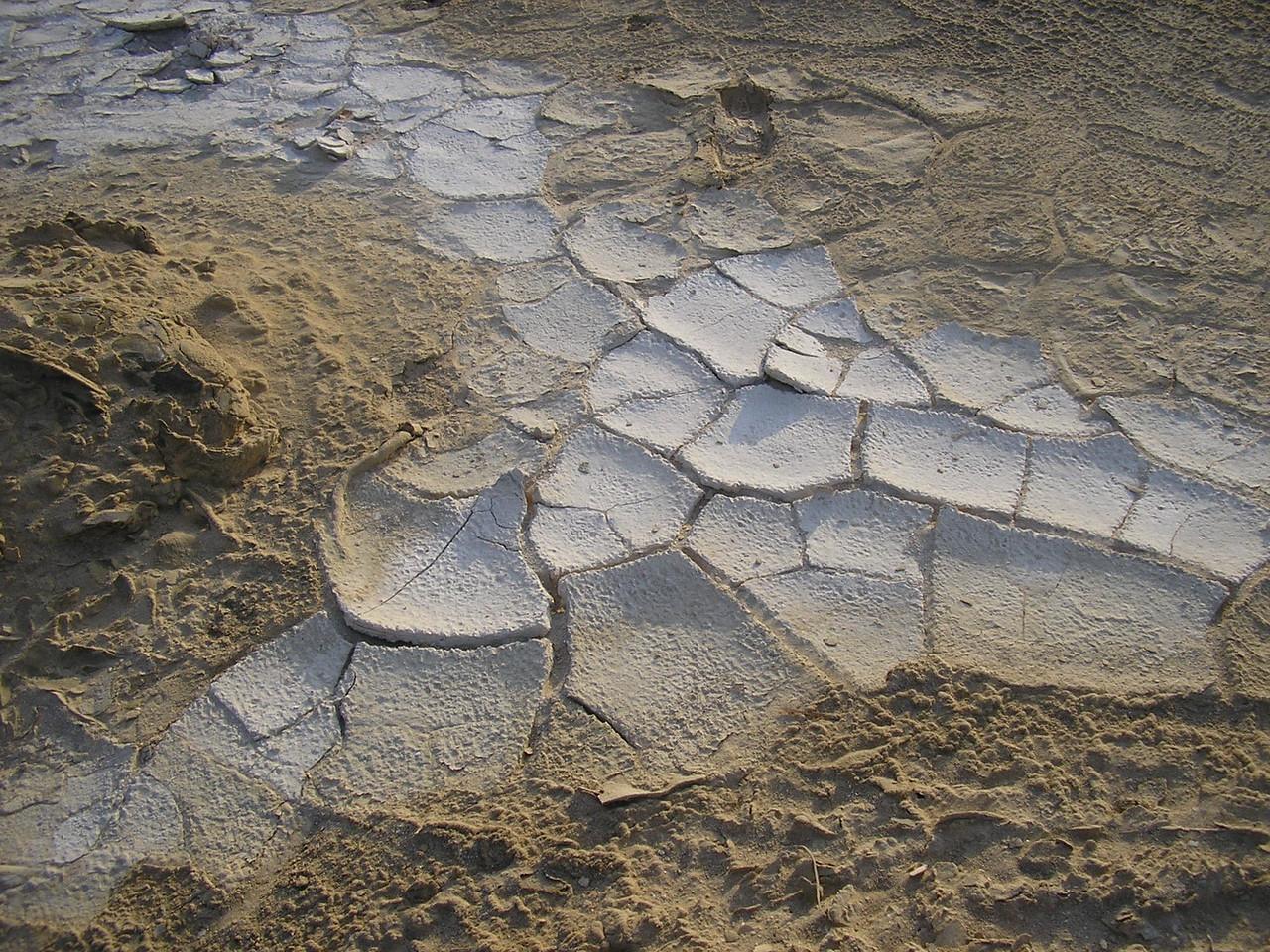 Dried Salt Deposit