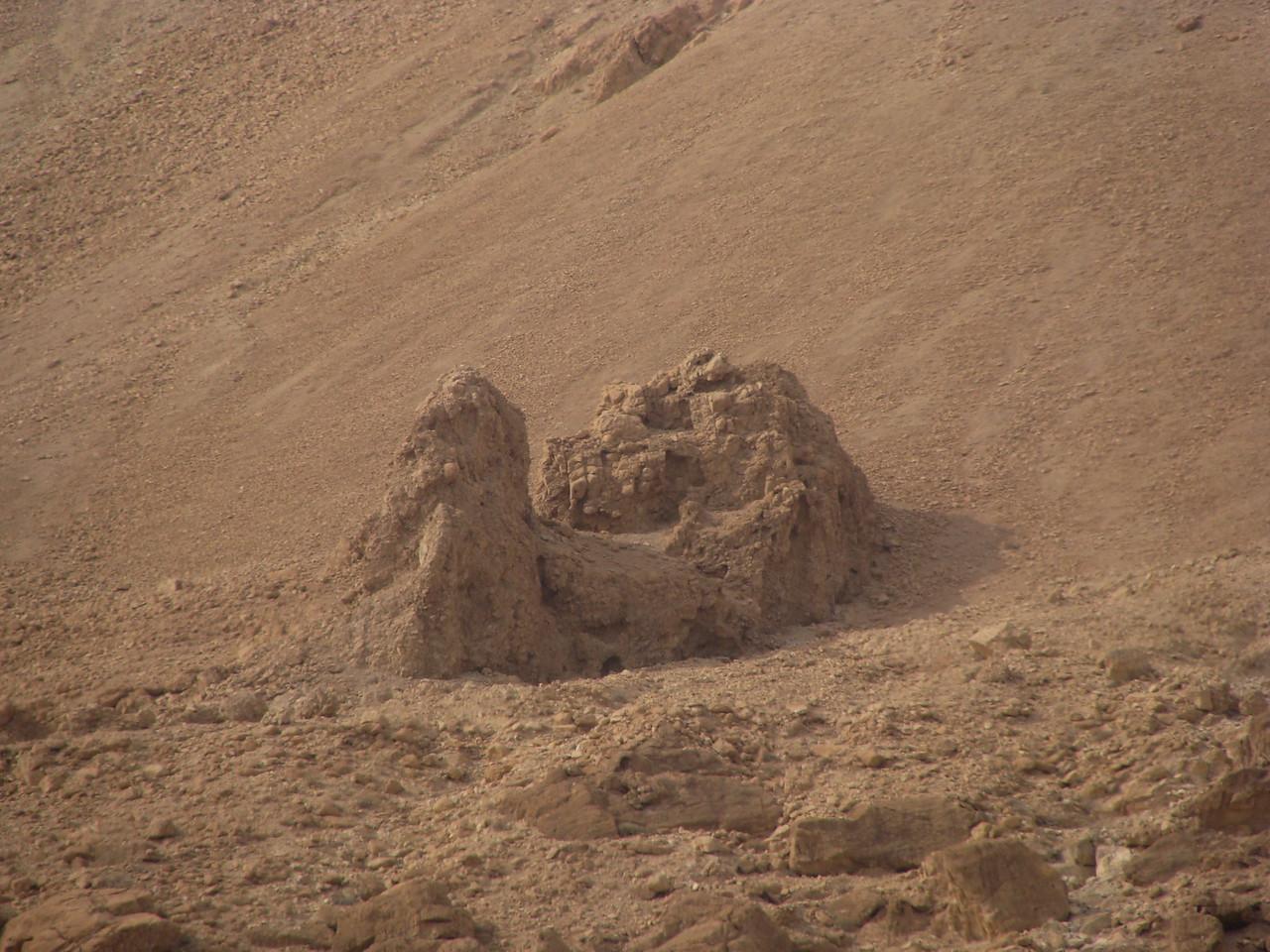 Camel Sand Sculpture