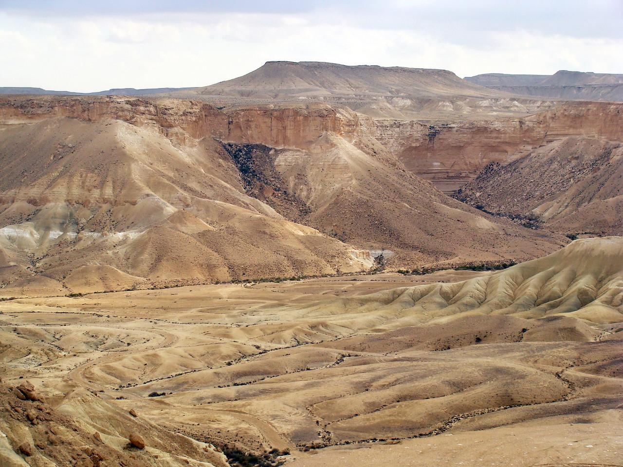 Judean Desert Terrain