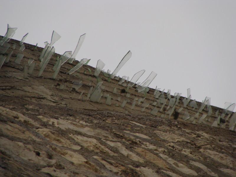 Glass Shard Wall Fortification