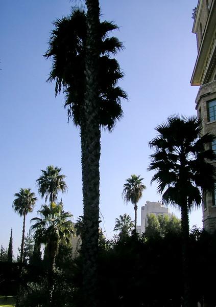 King David Hotel Vista