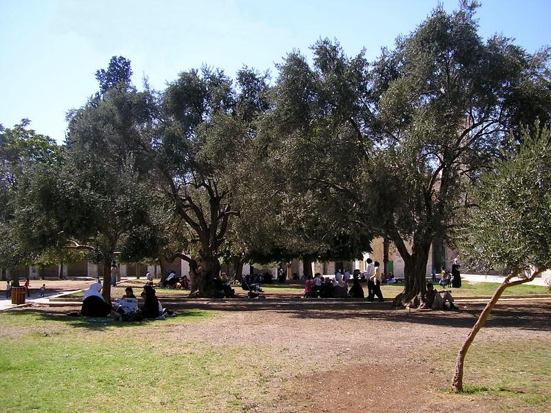Temple Mount Park