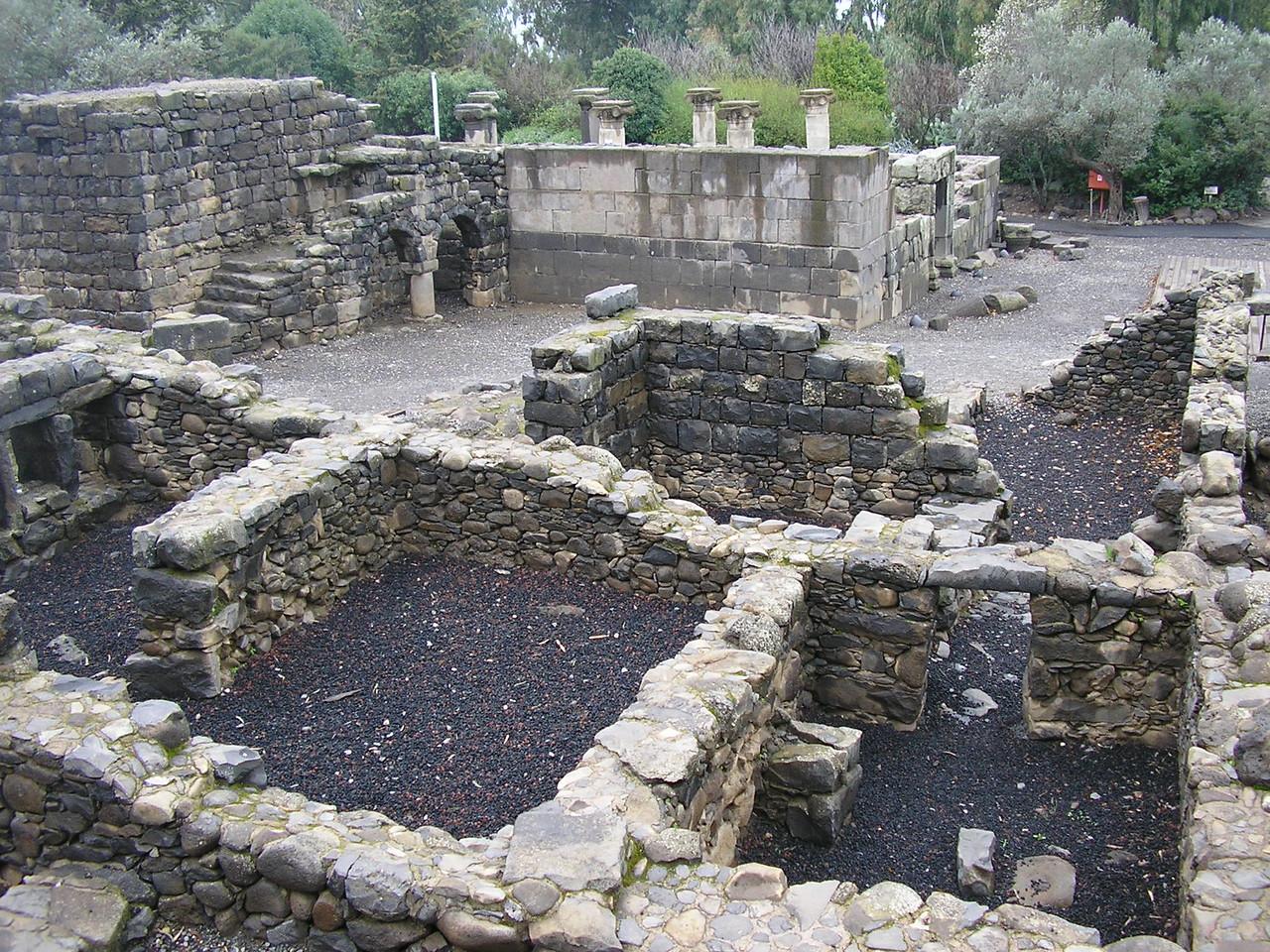 Katzrin Ancient Village and Synagogue Foundations and Walls