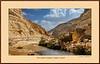 Ein Avdat Canyon, Negev, Israel. the Beautiful #10