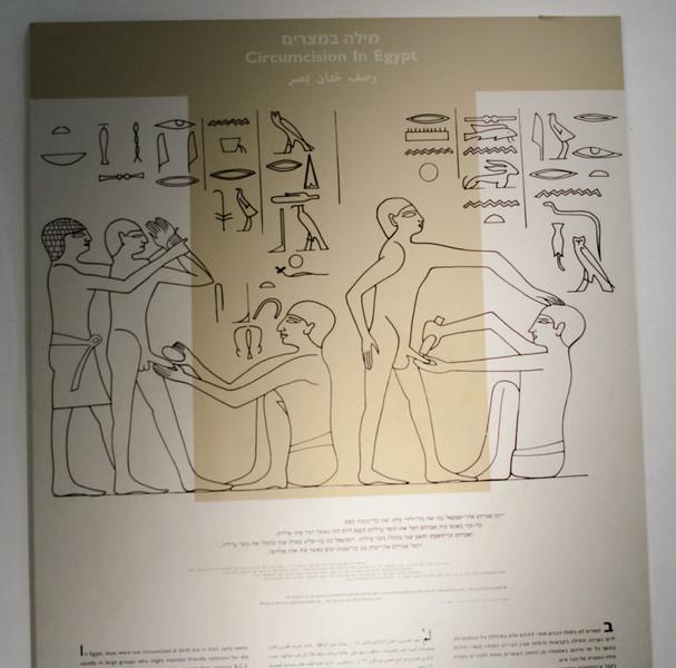 Circumcision in Egypt