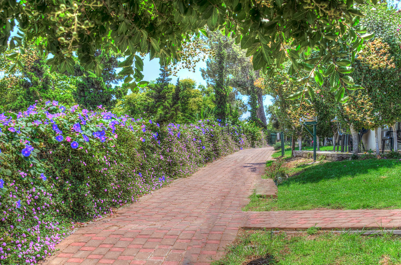 Shoresh Green