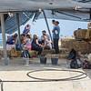 Archaeologists Celebrating a New Mosaic
