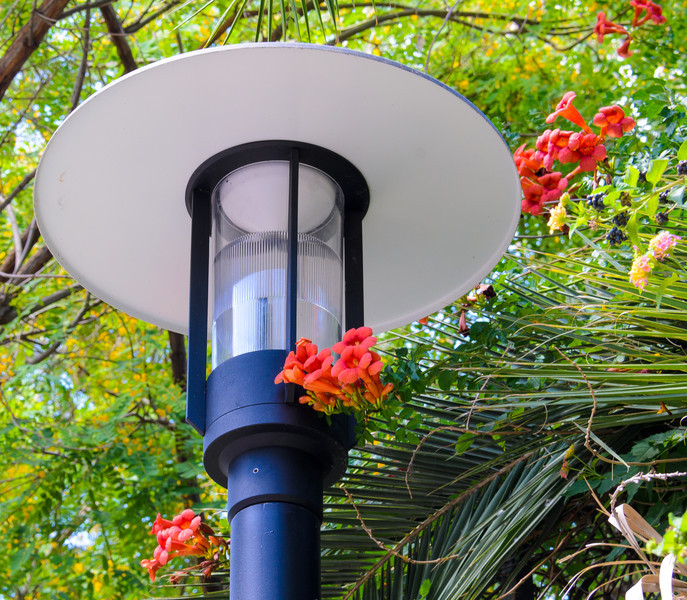 Streetlight with flowers