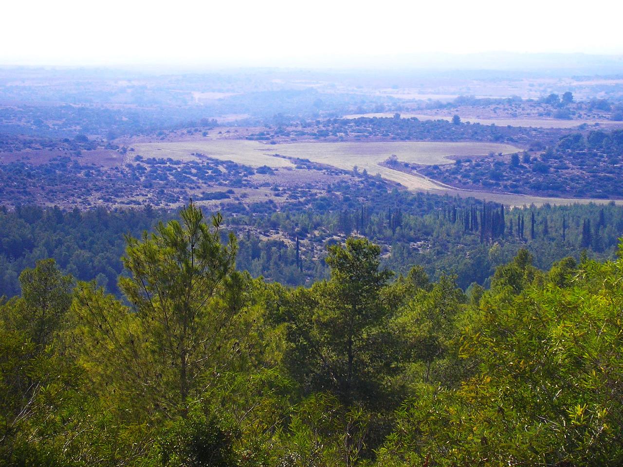 Beit Shemesh Valley