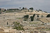 Mt. of Olives from City of David