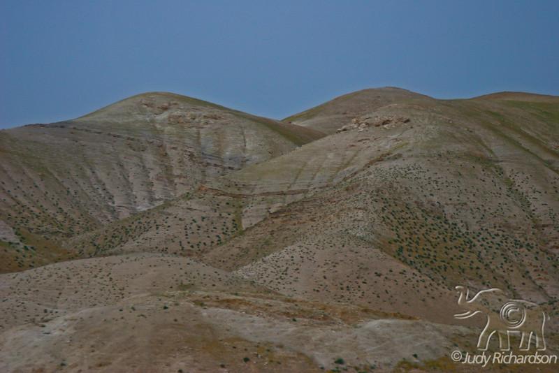 Rolling hills out side of Jerusalem