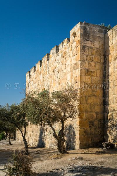 The old city walls of Jerusalem, Israel, Middle East.