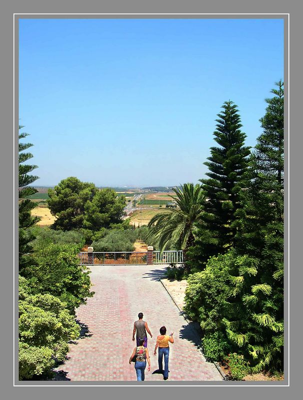 View from the church Latrun
