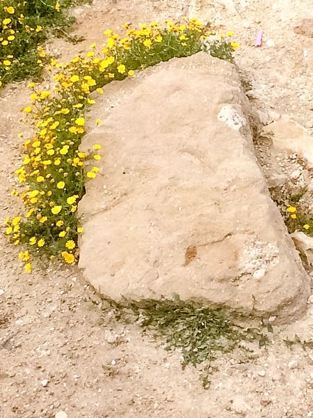 Frame for stone
