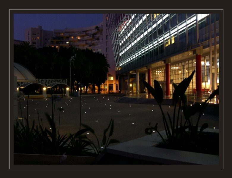 At the evening in the Rishon Lezyion park