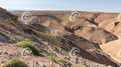 Wadi Kidod near Arad, Israel