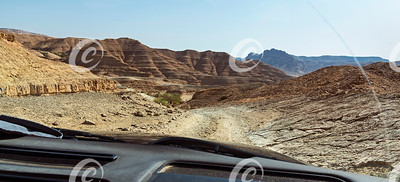 Dekalim Palm Ascent and Cockscomb Mountain in the Makhtesh Ramon Crater in Israel
