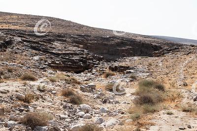 Typical Negev Desert Habitat near Arad, Israel