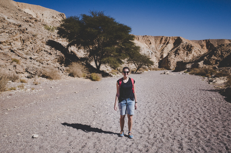 Im Wadi nahe Red Canyon
