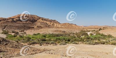 Ein Saharonim Spring in the Makhtesh Ramon Crater in Israel