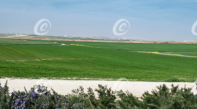 Gaza City from the Western Negev in Israel