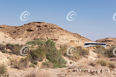 Tour Bus Parked at the Saharonim Spring in the Makhtesh Ramon Crater in Israel