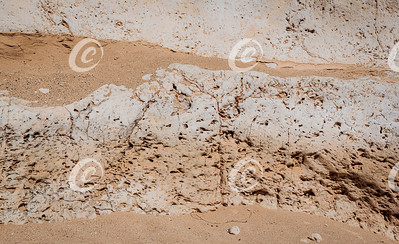 Detailed Section of a Limestone Cliff in the Nekarot Canyon in the Makhtesh Ramon Crater