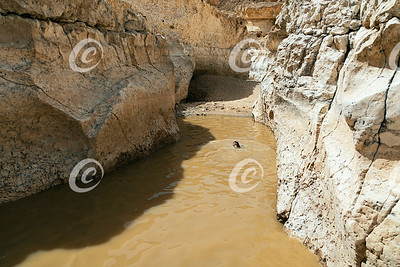 Hiker Cooling Off in a Winter Rainpool in the Makhtesh Ramon Crater in Israel