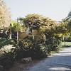 Im Ein Gedi Kibbutz
