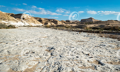 Massive Chalky Limestone Slab on the Nahal Akev Stream in the Zin Valley in Israel