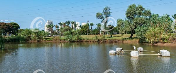 Pond in Yarkon Park in Tel Aviv Israel