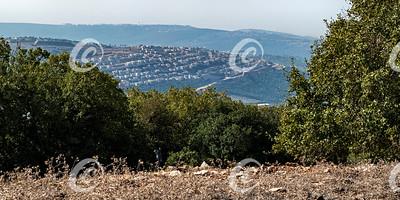 Kibbutz Sasa from Mount Adir Viewpoint in Israel