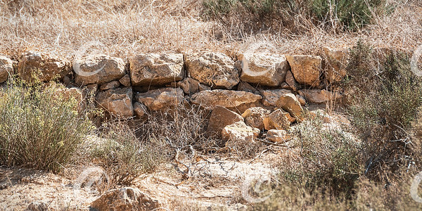 Section of a Nabatean Agricultural Terrace Retaining Wall in the Negev in Israel