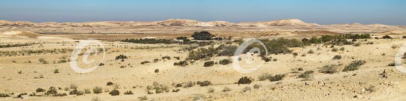 Panorama of the Negev Desert