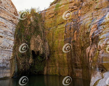 Waterfall of Ein Akev Spring in the Zin Wilderness in Israel