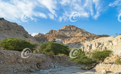 Wadi David near the Dead Sea Shore