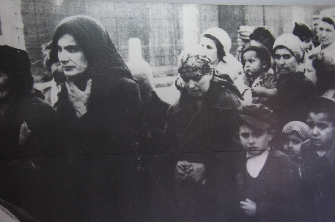 Jews brought from Hungary.