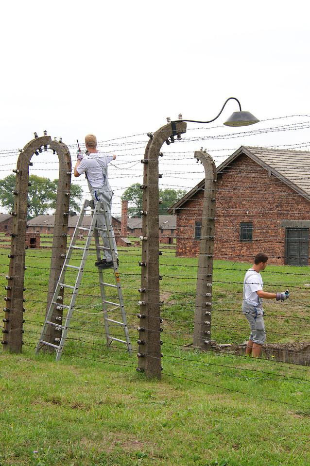 Current maintenance at Birkenau.