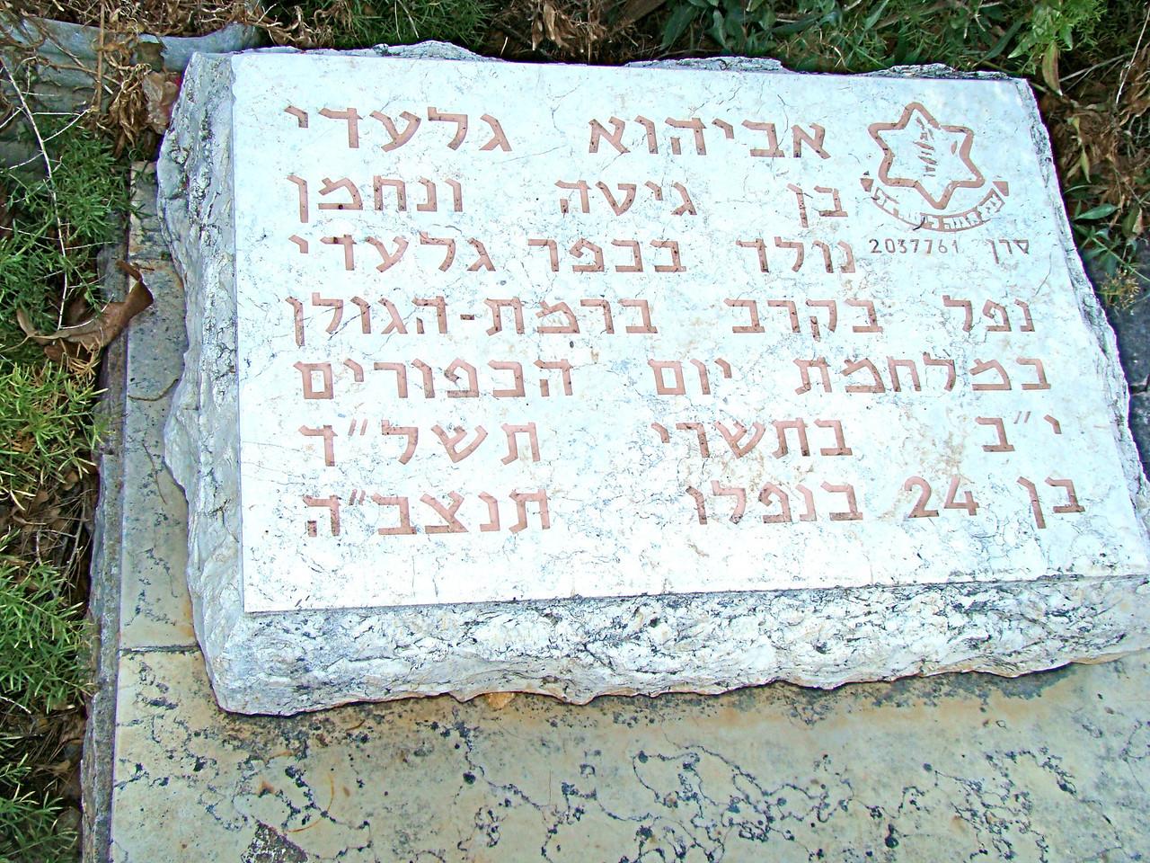 Tel Hai Cemetery-IDF Headstone