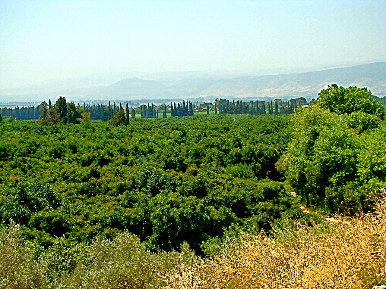 Tel Dan-Hula Valley