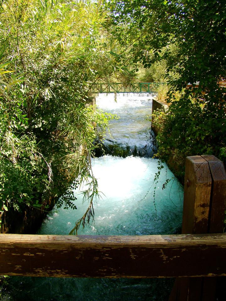 Dan Nature Preserve-Dan River