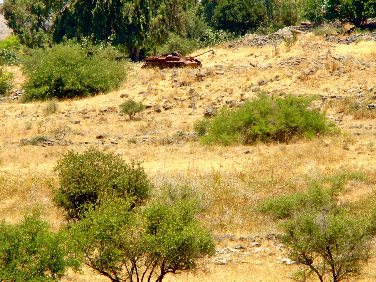 Tel Dan-Bunt Out Syrian Tank