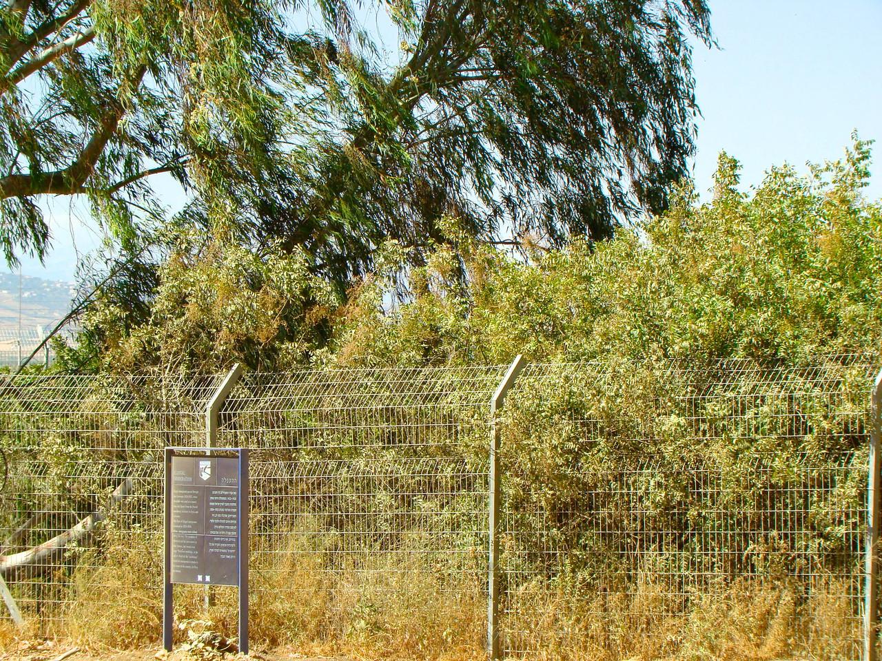 Metulla-Lebanon Border (1)