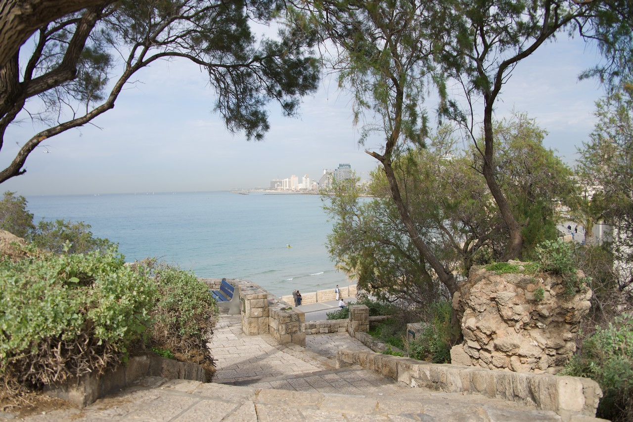 View From Jaffa