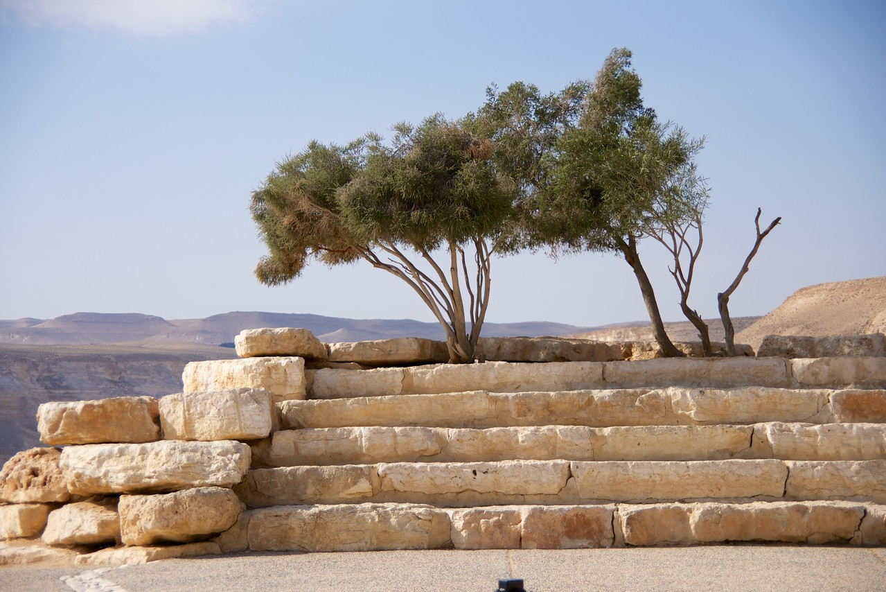 View from Ben Gurion Graves