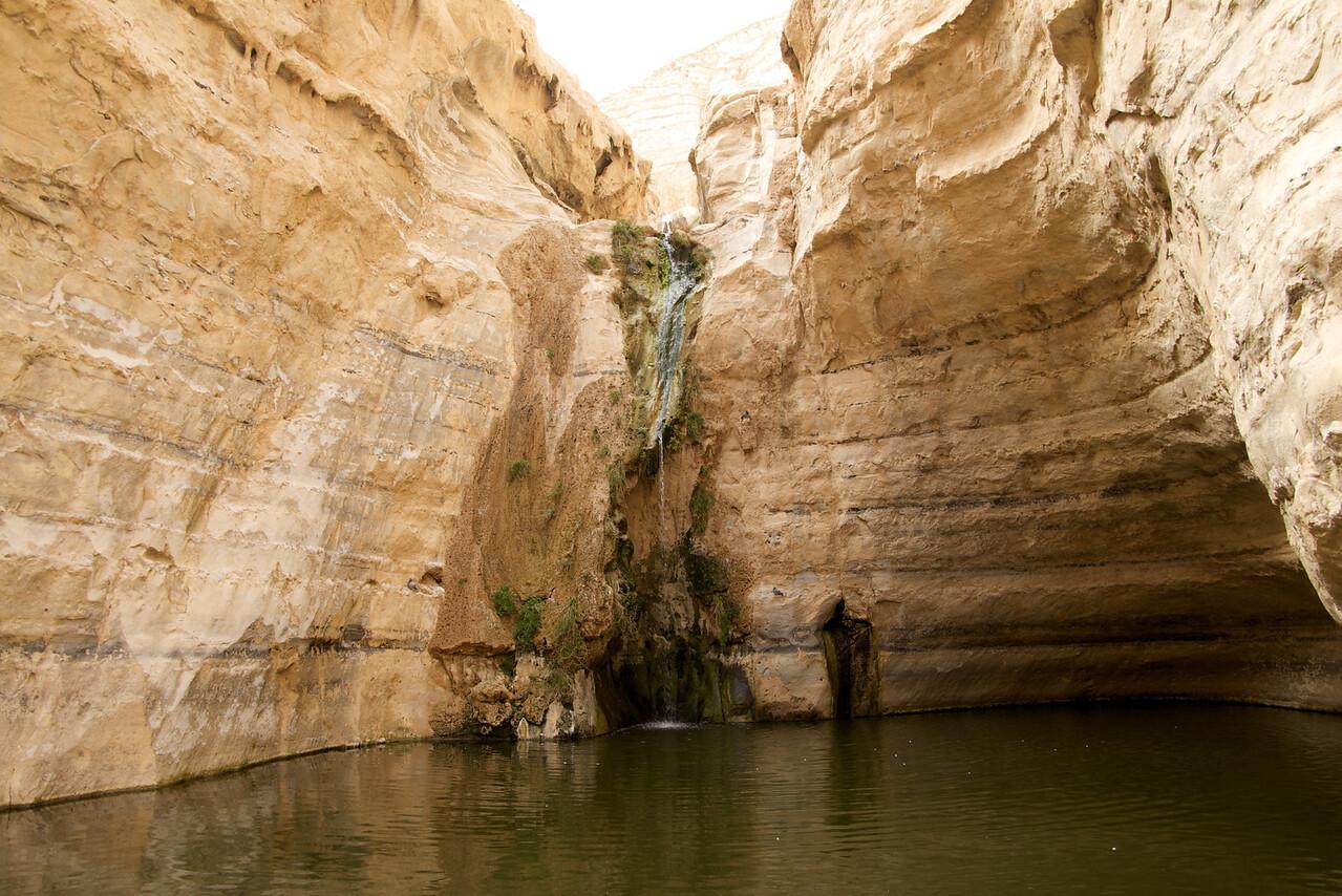 Ein Avedot Waterfall