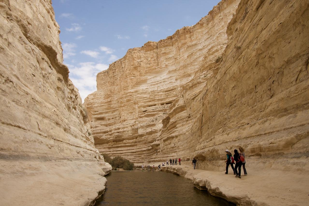 Paths Around Ein Avedot Waterfall