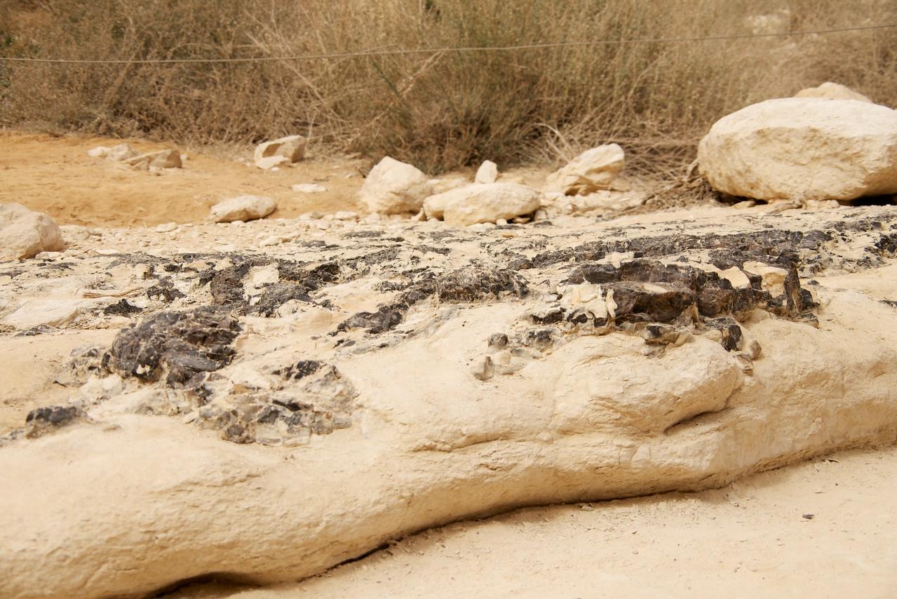 Flint Stone (at ground level) Along Path